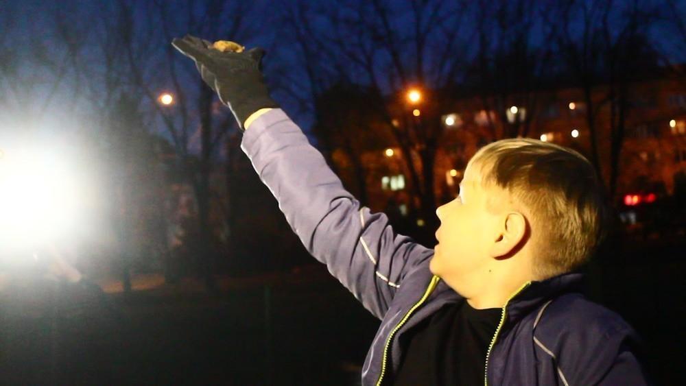 Это фиаско: Краснодарцы сорвали первый вылет летучих мышей