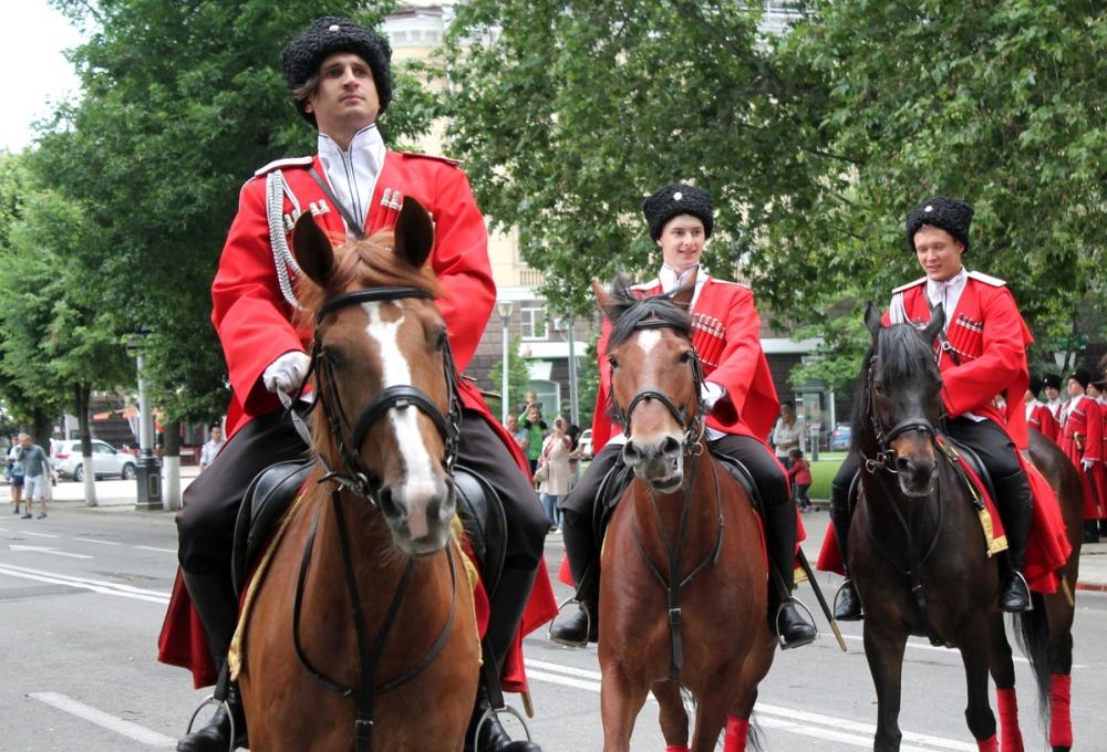 В Кубанском казачьем войске считают, что не обязаны убирать лошадиный навоз в центре Краснодара