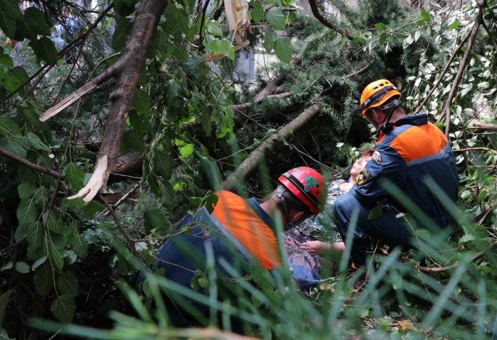 Спасатели достали пенсионерку из-под дерева в Сочи