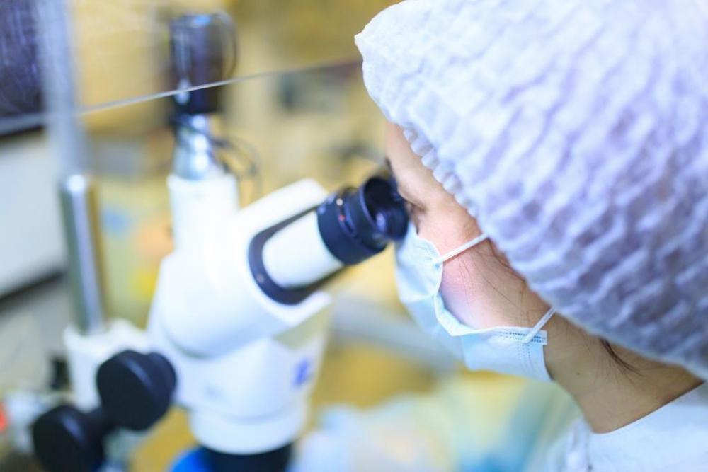 В Краснодарском крае набирает обороты эндокринное бесплодие