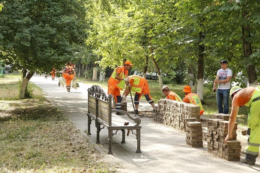 В Гагаринском бульваре Краснодара появится 5 тысяч новых деревьев и кустарников