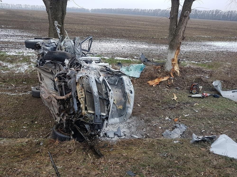 На Кубани Toyota Camry сгорела, врезавшись в дерево: погибли два человека