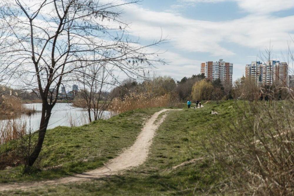 В Народном парке Краснодара могут создать велодорожку
