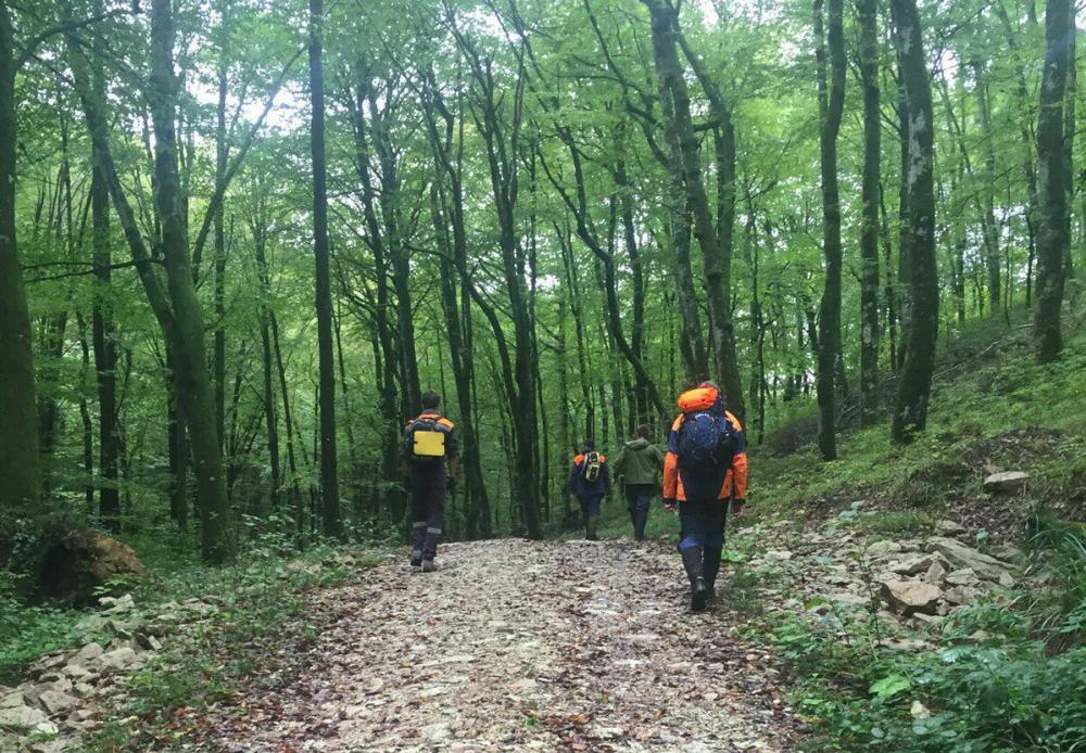 Пенсионера-грибника нашли через два дня в лесах Кубани