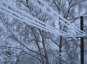 Сочинцев предупредили об опасности обрыва проводов из-за снегопада
