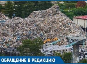 «Сочи задыхается от мусора», - жители написали петицию на имя губернатора Кубани