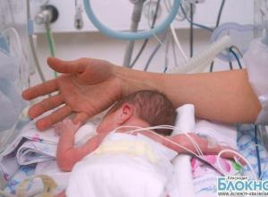 Краснодарские врачи выходили 460-граммового ребенка
