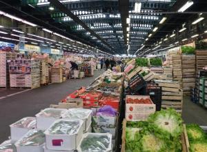 На полмиллиона рублей ограбили продуктовую базу на Кубани