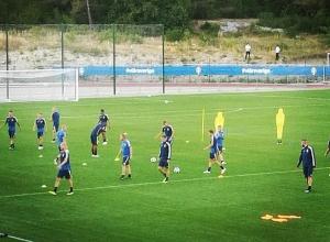 Трехцветная кошка открыла тренировку сборной Швеции в Геленджике