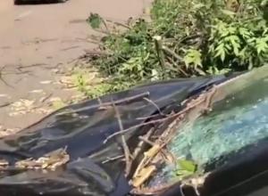 Ветер атаковал Краснодар: Не обошлось без повреждений