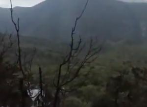 Пожар, вспыхнувший из-за падения вертолета, в заповеднике под Анапой потушили на следующий день