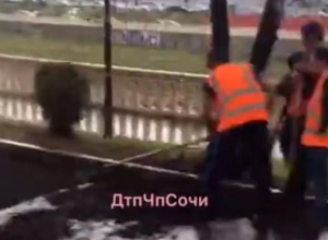 «Дождь, нет не слышали»: как сочинские дорожники укладывали новый асфальт