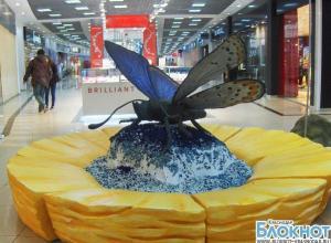 В Краснодаре открылась выставка гигантских насекомых