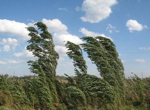В Краснодаре задует ураганный ветер