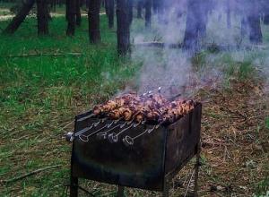 В Сочи летом запретят жарить шашлыки