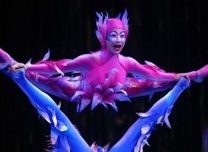 Канадские циркачи покажут «уличное» шоу в Краснодаре