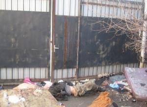 В Краснодаре ищут родственников погибшего бездомного
