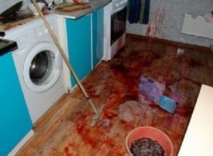 На Кубани мужчина убил собутыльницу 40 ножевыми ударами