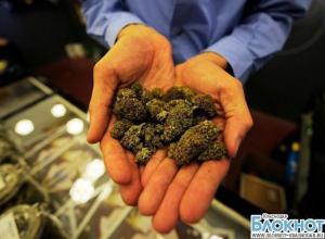 Молодой кубанец хранил дома около семи килограммов марихуаны