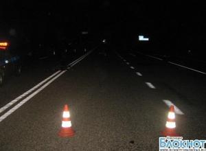 В Гулькевичском районе погиб пешеход
