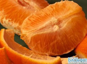 В Новороссийске изъяли 72 тонны египетских апельсинов