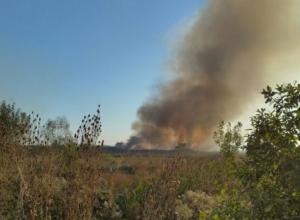 Под Краснодаром выжигают траву и травят местных жителей