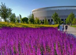 Жителей Краснодара восхитила «новая локация» в парке Галицкого