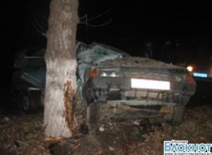 В Крымске автомобиль съехал с дороги и врезался в дерево