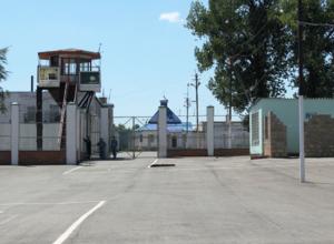 На тюремной звероферме нашли мертвым молодого сочинца, сидевшего за кражу