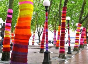 Новогодний street art: в Краснодаре украсили деревья вязаными «шарфиками»