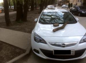 В Краснодаре неправильно паркующихся автомобилистов наказали с помощью кирпичей и бревен