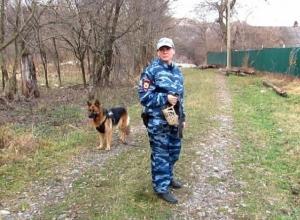 Овчарка Яра помогла раскрыть кражу бензопил в Краснодарском крае