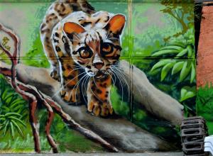 Звериные граффити украсили набережную под Туапсе