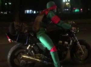Черепашек-ниндзя призвали на помощь в патрулировании Краснодара на День города