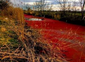 Красиво: Под Краснодаром по неизвестной причине покраснела река