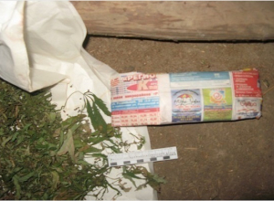 Кубанский наркоман  спрятал у себя дома тысячу доз марихуаны
