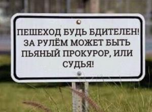«Практически невозможно» оформлять пьяных судей за рулем в Краснодарском крае