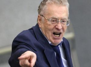 Жириновский хочет «своего человека» на пост мэра Сочи