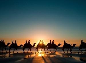 «Великий Шелковый путь» вновь пройдет по Кубани