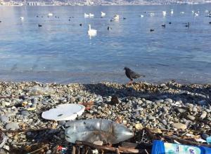 Туристы пожаловались в Общественную палату на грязные пляжи Краснодарского края