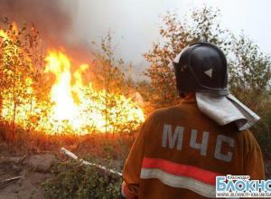 Кубанские пожарные борются с огнем в лесах Адлерского района