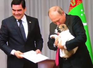 Путин в Сочи поцеловал собаку, которую ему подарили на день рождения
