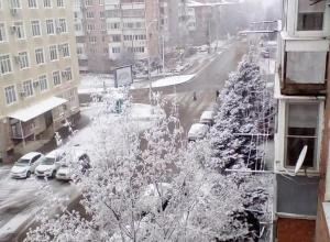 В Краснодаре на этой неделе ожидают первый снег