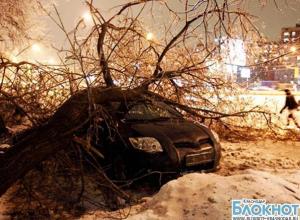 Мэрию Краснодара обвинили в медленной реакции на январскую стихию