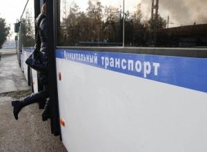 В Краснодаре запустят 98 олимпийских автобусов