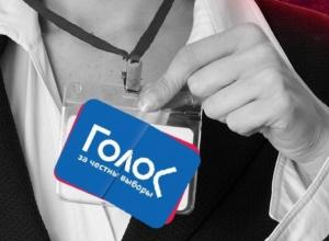 «Сфальсифицированные фальсификации за деньги»: кто и зачем хочет наблюдать за выборами в Краснодарском крае