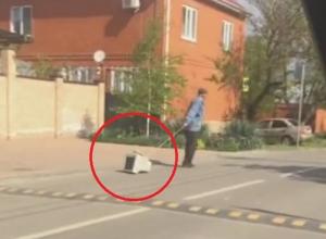 «Выгул» техники в Краснодаре продолжается: теперь мониторы на поводках