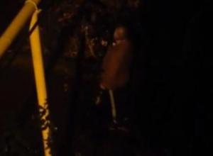 В Сочи мужчина отметил Новый год стрельбой из автомата