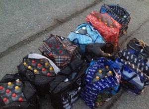 Жительница Кубани пыталась провезти 310 литров алкоголя в автобусе