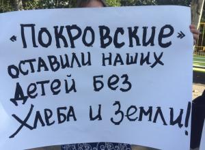 Кубанские фермеры в надежде спастись от концерна «Покровский» снова вышли на пикет в Краснодаре